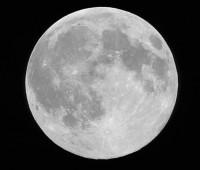 14-day-moon-sm.jpg